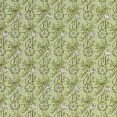 Pale_Green_slash_Sage_2_1024x1024